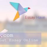 Essayhave.com - Great Essay Online